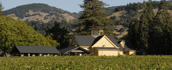 Rector Creek Vineyard