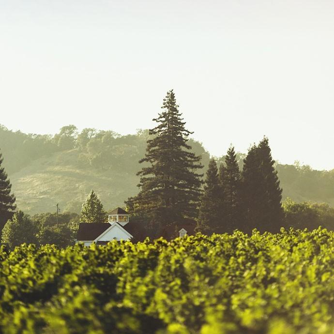 Paraduxx estate house and rector creek vineyard