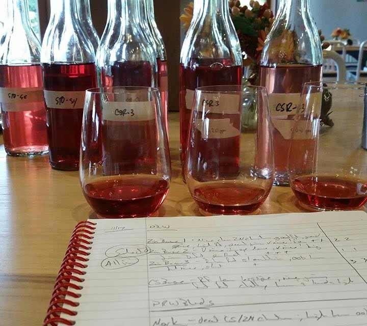 Paraduxx Rose wine